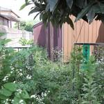 夏場の空家管理の必需品