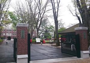 成蹊大学正門の写真