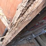木材扉の腐食