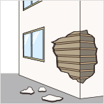 外壁の仕上材料が剥落、腐朽又は破損し、下地が露出している