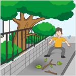 立木の腐朽、倒壊、枝折れ等が生じ、近隣の道路や家屋の敷地等に枝等が大量に散らばっている/立木の枝等が近隣の道路等にはみ出し、歩行者等の通行を妨げている