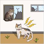 動物の鳴き声その他の音が頻繁に発生し、地域住民の日常生活に支障を及ぼしている