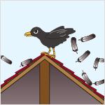 敷地外に動物の毛又は羽毛が大量に飛散し、地域住民の日常生活に支障を及ぼしている