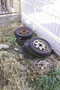 その他にもタイヤや生ごみなども捨てられていました