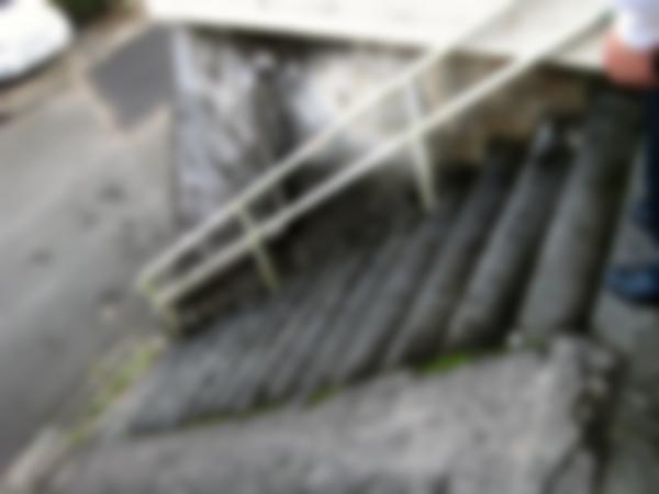 玄関への階段もコケが生えていて滑りやすい危険な状態でした