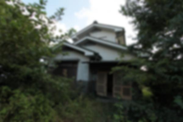 鬱蒼(うっそう)とした林を抜けた先には日本家屋がありました