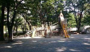 新宿中央公園の写真