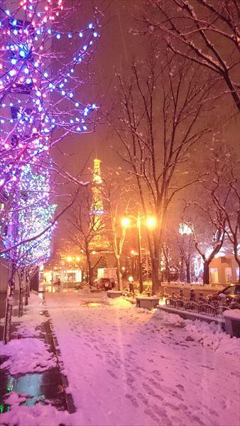 雪の札幌「大通り公園」