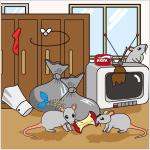 空き家のネズミにご用心!